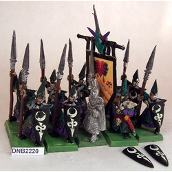 Dark Elf Warriors med Full Command (Metall, 10st)