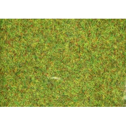 Ziterdes Conquest Grass - Medium Green