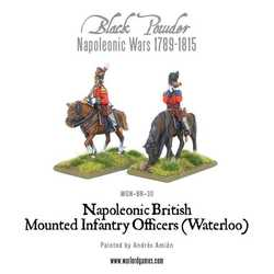 Napoleonic: Mounted British Infantry Colonels (Waterloo)