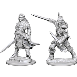 Pathfinder Deep Cuts (unpainted): Human Male Fighter