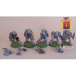 Space Wolves: Grey Hunter Squad (6st, Metall)