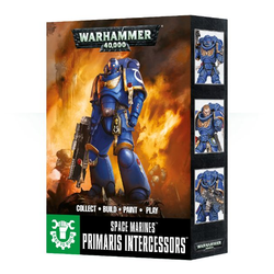 Space Marine Primaris Intercessors (3)