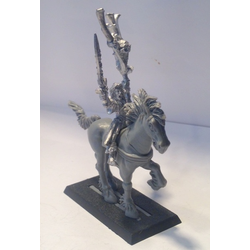 Wood Elves Sorcerer on Horse