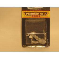 Space Wolves: Wolf Guard Terminator (Storm Bolter, Chaifist)