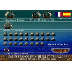 Franco Spanish Fleet