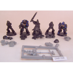 Space Wolves: Grey Hunter Pack (5st, Metall)