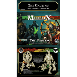 The Undying Story Encounter & Adventure Box