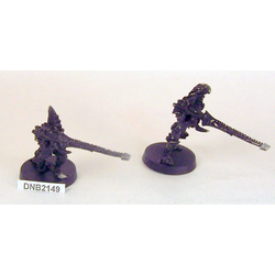 Dark Eldar Warriors with Splinter Cannons (metall, 2)