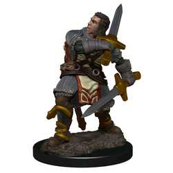 Icons of the Realms Premium Figures: Human Male Paladin