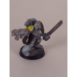 Space Wolf: Sergeant (Metall)