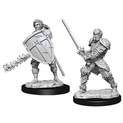Nolzur's Marvelous Miniatures (unpainted): Male Human Fighter