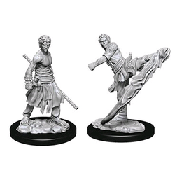 Nolzur's Marvelous Miniatures (unpainted): Half-Elf Male Monk