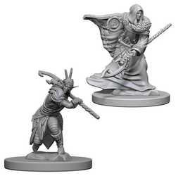 Nolzur's Marvelous Miniatures (unpainted): Elf Male Druid