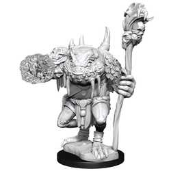 Nolzur's Marvelous Miniatures (unpainted): Green Slaad