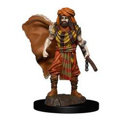 Icons of the Realms Premium Figures: Human Druid Male